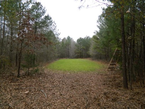 68 Acres Prime Hunting Near Athens : Arnoldsville : Oglethorpe County : Georgia
