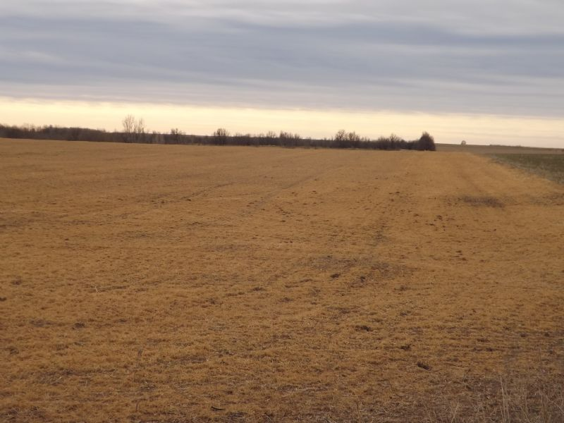 80 Acres * Hunting * Cropland : Medford : Grant County : Oklahoma