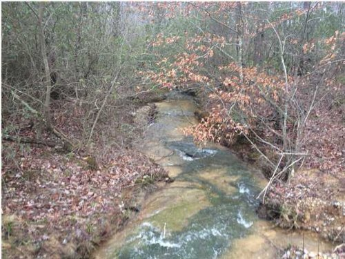Bank Owned 319+/- Acres : Tracy : Grundy County : Tennessee