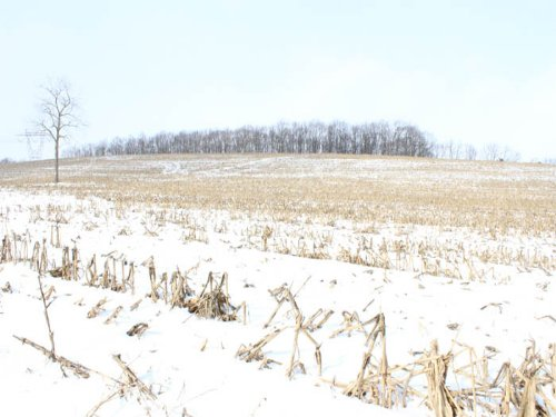 208 +/- Acres Of Prime Farm/wooded : Bloomsburg : Columbia County : Pennsylvania