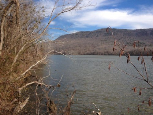 5.14+/- Lakefront Property : Whitwell : Marion County : Tennessee