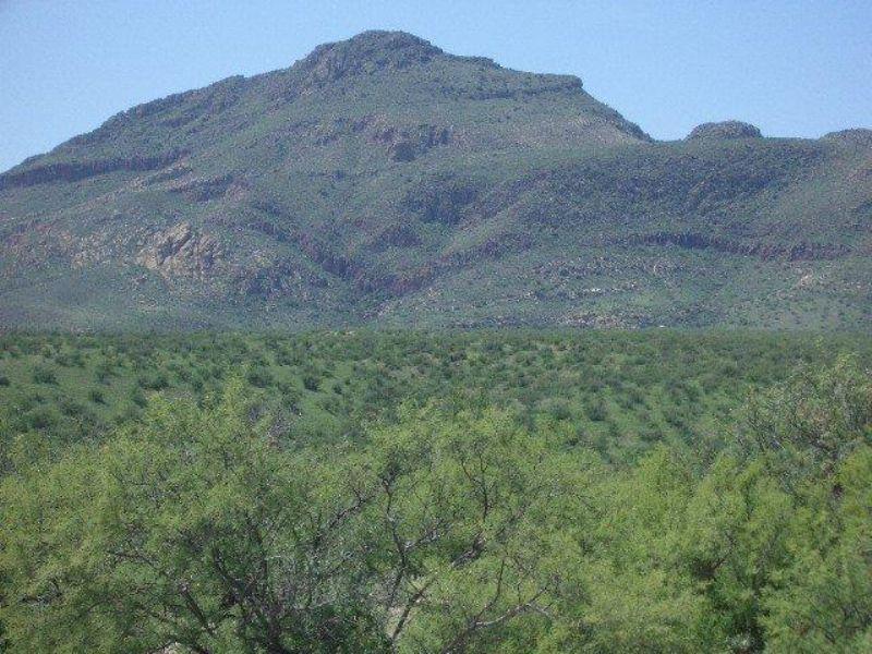 Southern Arizona Ranch Opportunity : Tubac : Santa Cruz County : Arizona
