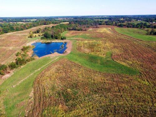 248 Acres Mixed-Use Farm : Madison : Monroe County : Missouri