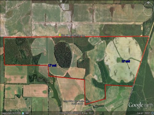 Irrigated Farm Land : Lake Blacksheare : Sumter County : Georgia