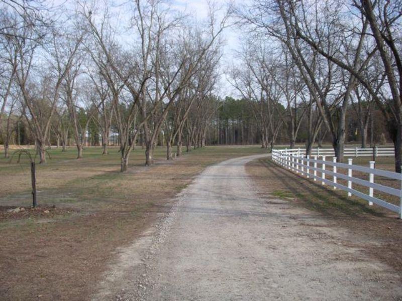 Hereford Farm : Davisboro : Washington County : Georgia