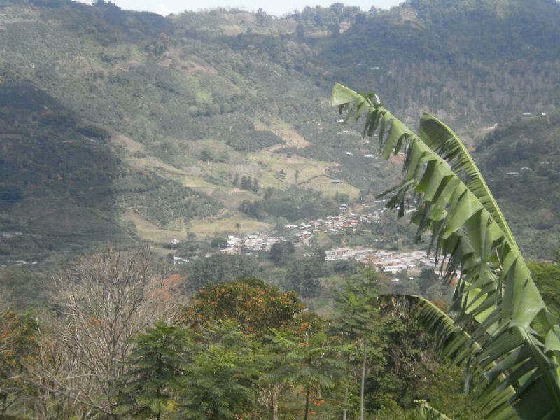 5.8 Acre Mountain Farm-spring : Orosi : Costa Rica