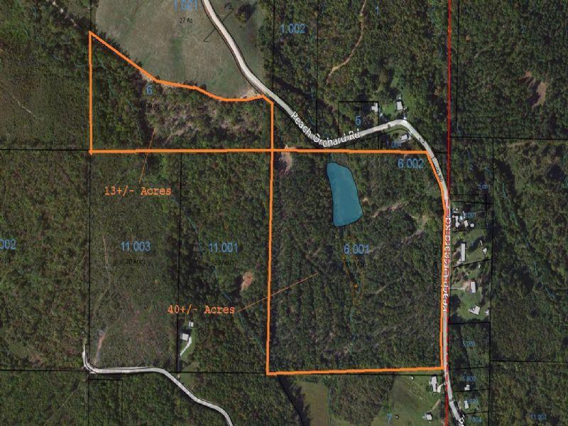 40+/- Acres With Lake : Ashland : Clay County : Alabama