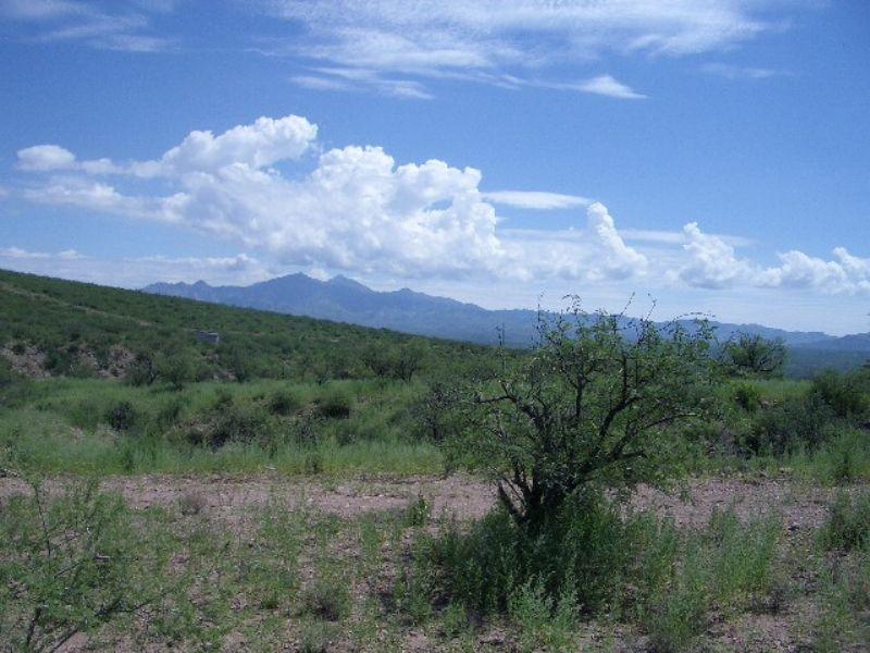 Alegria Canyon Ranch : Tubac : Santa Cruz County : Arizona