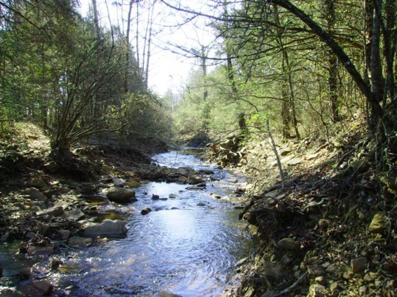 174 +/- Acre Hunting Property : Clarksville : Johnson County : Arkansas