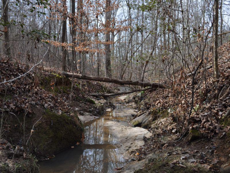 Oak Branch : Elbert : Elbert County : Georgia