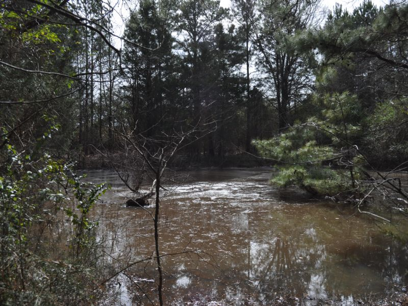 Cedar Grove Farm : Elberton : Elbert County : Georgia