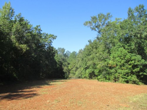 200 Acres County Line Church Rd : Warm Springs : Meriwether County : Georgia