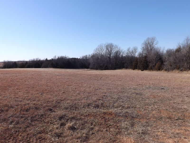 80 Acres- Timber- Creek- Cropland : Guthrie : Logan County : Oklahoma