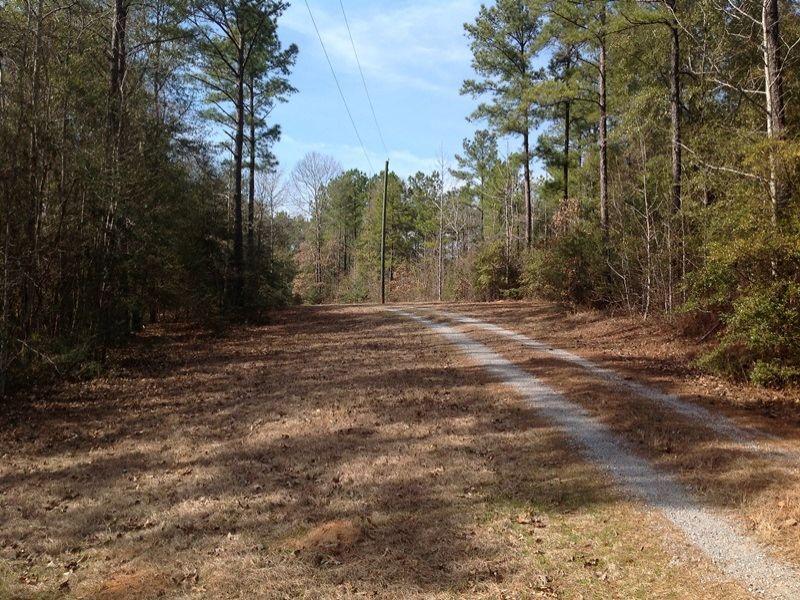 Quail Course Tract : Valley Grande : Dallas County : Alabama