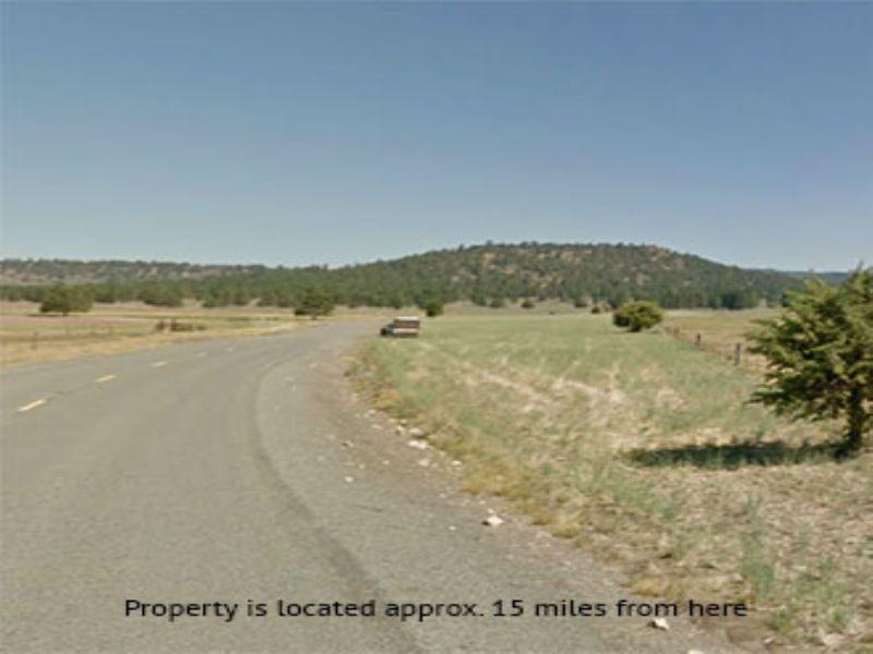 9.86 Acres Near Beatty : Beatty : Klamath County : Oregon