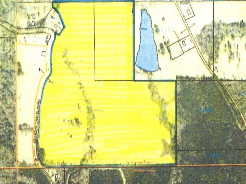 104 +/- Acres Of Pasture : Brantley : Pike County : Alabama