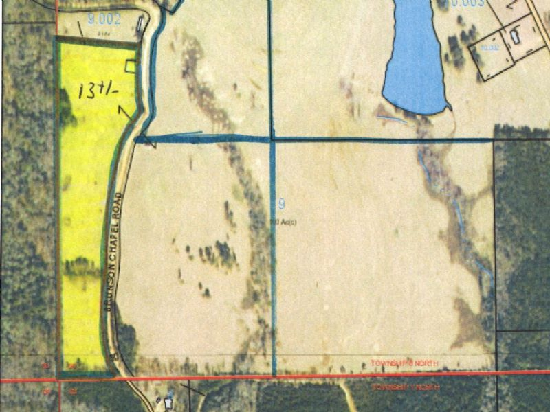 13 +/- Ac Of Pasture : Brantley : Crenshaw County : Alabama