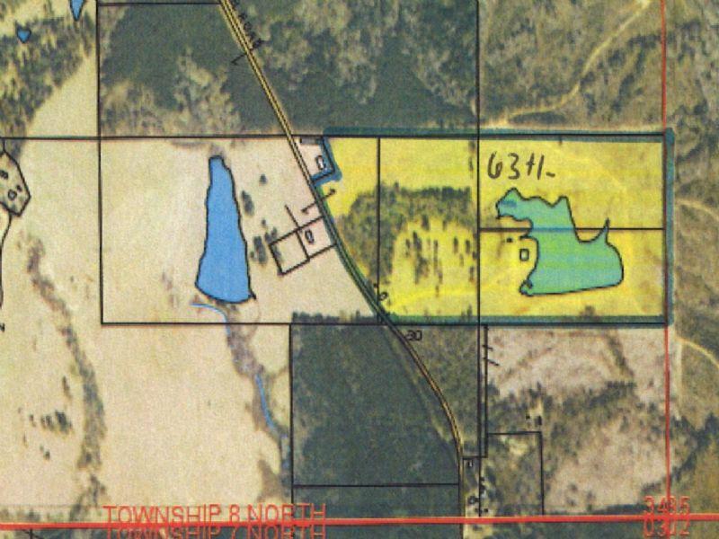 63 +/- Acres With Cabin & Lake : Brantley : Crenshaw County : Alabama
