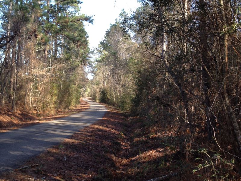 36 Acres : Sumrall : Lamar County : Mississippi