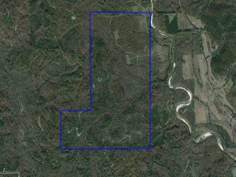 Cedar Creek Tract : Forest Home : Wilcox County : Alabama