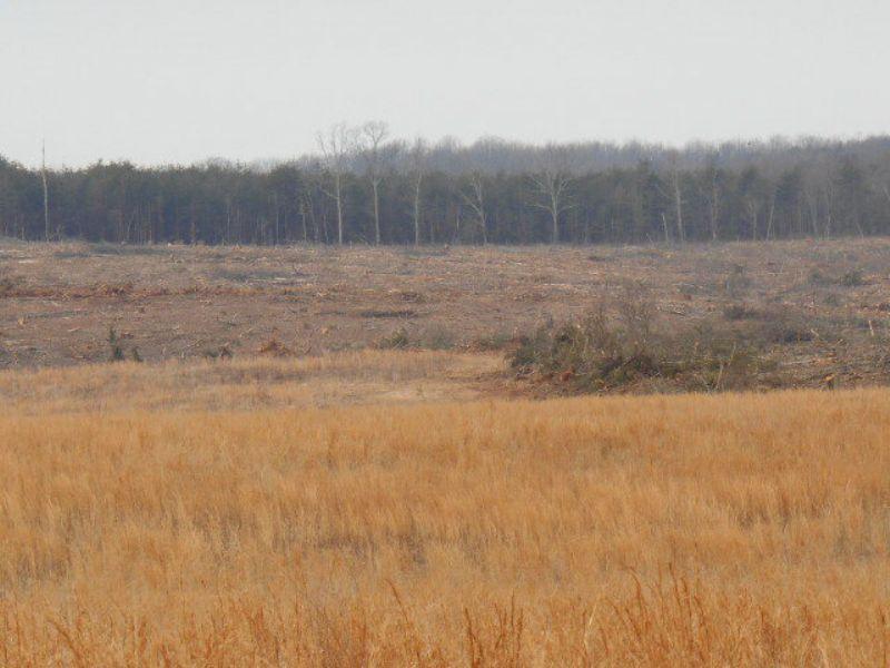 Hidden Lake Farm : Prospect : Prince Edward County : Virginia