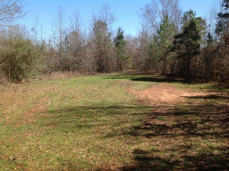 Colbert Tract : Eutaw : Greene County : Alabama