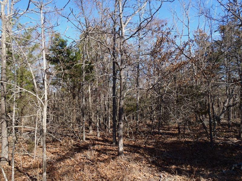 Dumpling Springs 30 : Antlers : Oklahoma County : Oklahoma