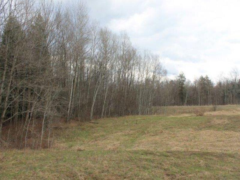 15 Acres Near Utica Adirondack Park : Schuyler : Herkimer County : New York