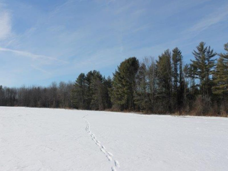 115 Acres With : Oppenheim : Fulton County : New York