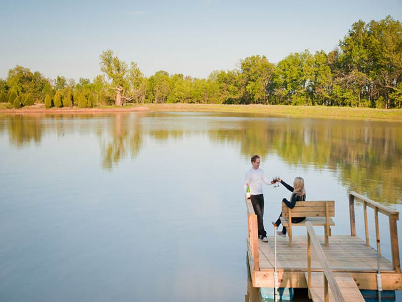 Illinois 98 Acre Property Auction : Creal Springs : Williamson County : Illinois