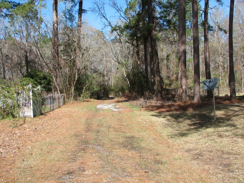 Richmond Hill Acerage : Richmond Hill : Bryan County : Georgia