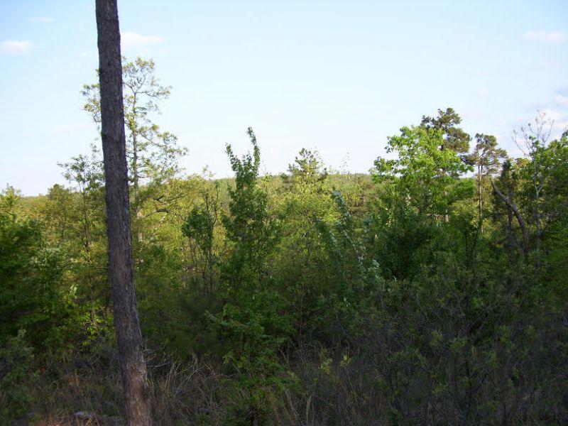 5 Acre Pine Mountain Ranch.terms : Wilburton : Latimer County : Oklahoma