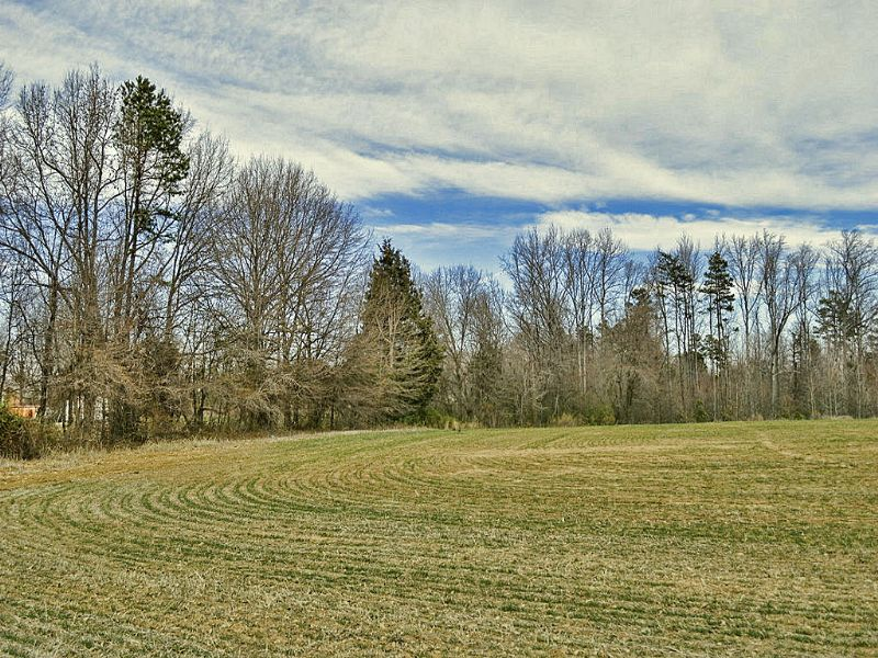 11 Acre Mini-farm : Gaffney : Cherokee County : South Carolina