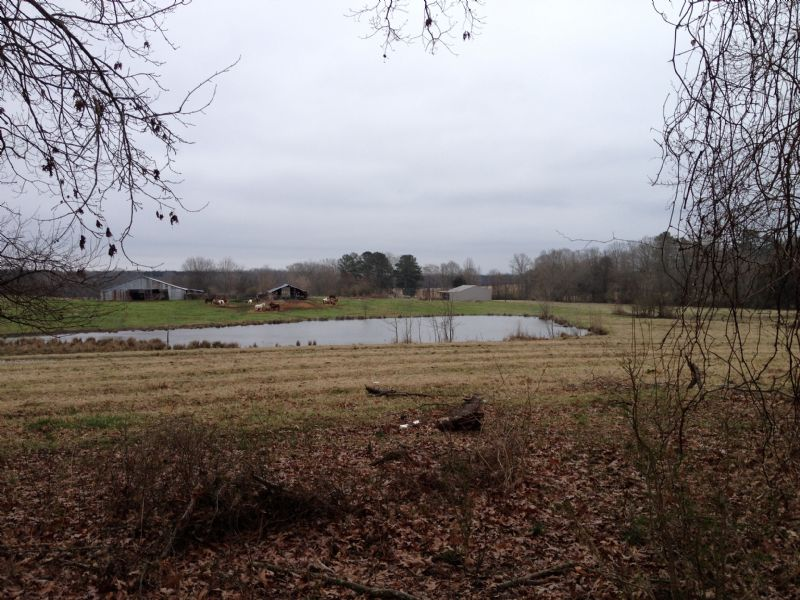 Reduced  82 Acres Home : Forest : Scott County : Mississippi