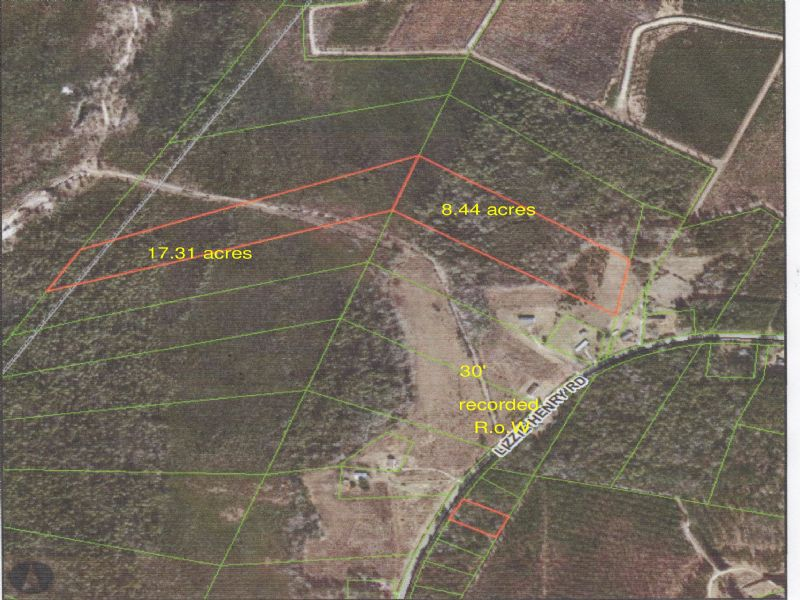 25 + Acres Hunting / Get-away Tract : Ivanhoe : Pender County : North Carolina