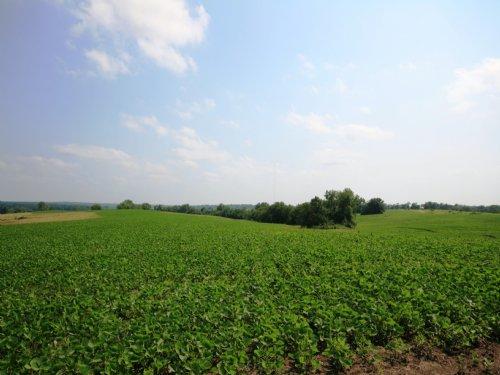167 Acre Income Tract : New Boston : Linn County : Missouri