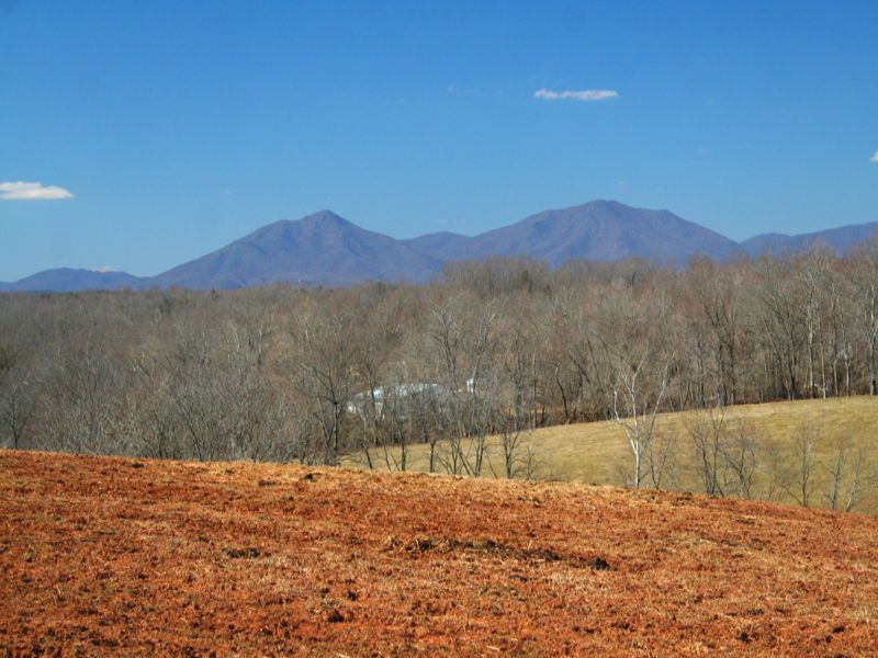1,130 Mountainview Acres: 17 Tracts : Forest : Bedford County : Virginia