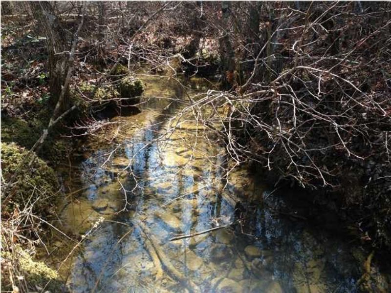99.6+/- Acres Hunters Paradise : Tracy City : Marion County : Tennessee