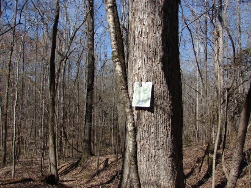 Big Hardwoods : Hurtsboro : Russell County : Alabama