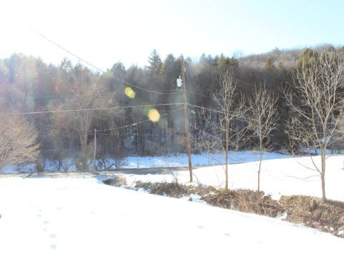 20 +/- Acres Of Wooded Land & Home : Berwick : Columbia County : Pennsylvania