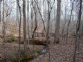 62 Acres With Creek Frontage
