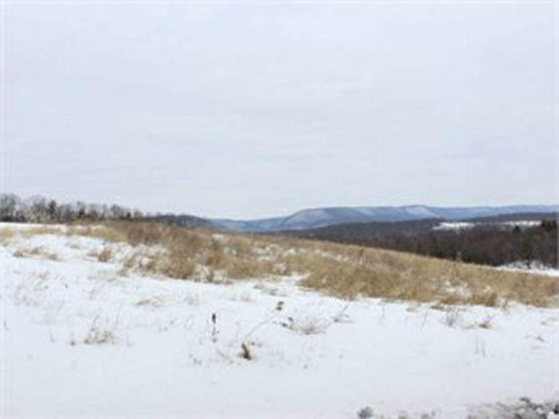 75 +/- Acre Farm/land In Benton : Benton : Columbia County : Pennsylvania