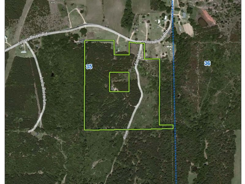 35 Acre Timber Tract : Silver Creek : Lawrence County : Mississippi