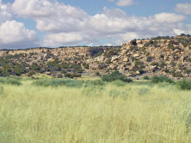 No Az Wilderness Ranch $193 Month : St Johns : Apache County : Arizona
