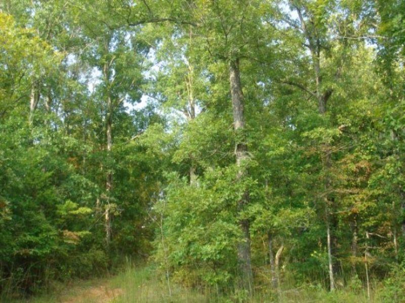 6.45 Acre Sugartree Falls. Terms $4 : Waynesboro : Wayne County : Tennessee