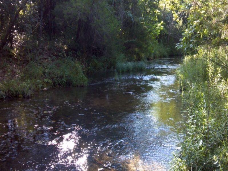 Live Water, 15 Acres 116532 : Viola : Fulton County : Arkansas