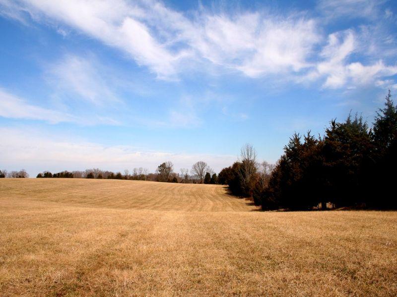 56.26 Rural Acres On Jennings Rd : Cartersville : Cumberland County : Virginia