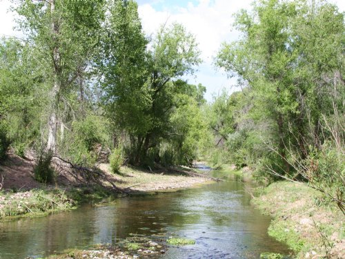 Sonoita Creek Ranch Arizona Estate : Rio Rico : Santa Cruz County : Arizona