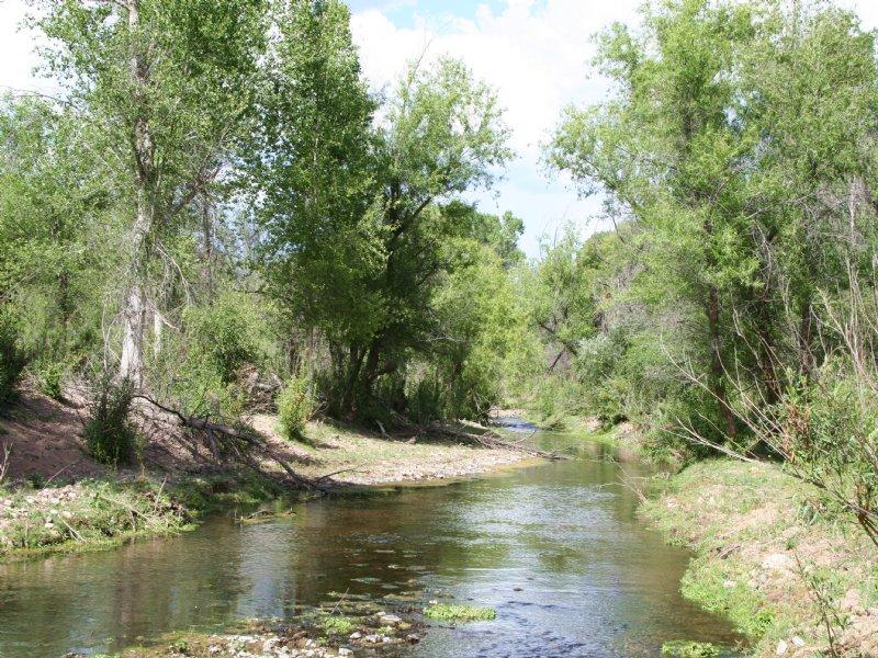 Sonoita Creek Ranch Arizona Estate : Rio Rico : Santa Cruz County : Arizona