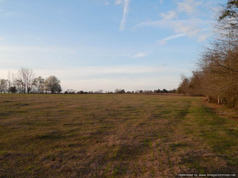 172 Acres Of Pasture Land : Poplarville : Pearl River County : Mississippi